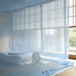 昔の道具「蚊帳」を使って夏の夜を快適に過ごす